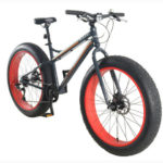progear Fat-Bike-Albert-Grey_ghost